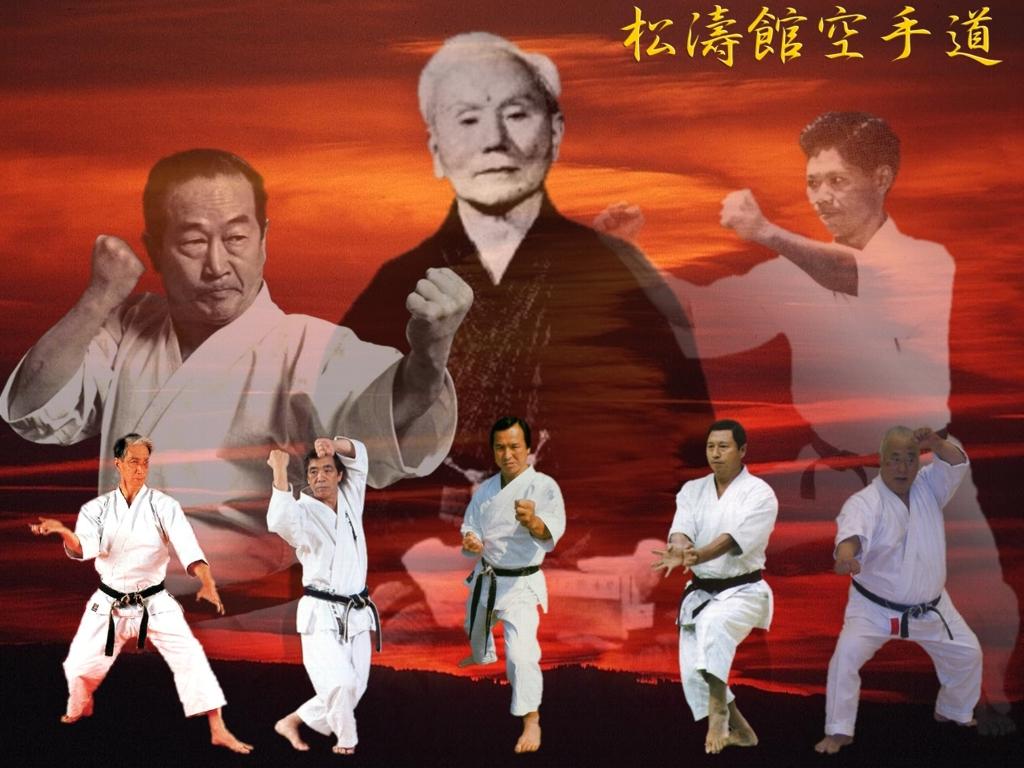 Shotokan karate masters